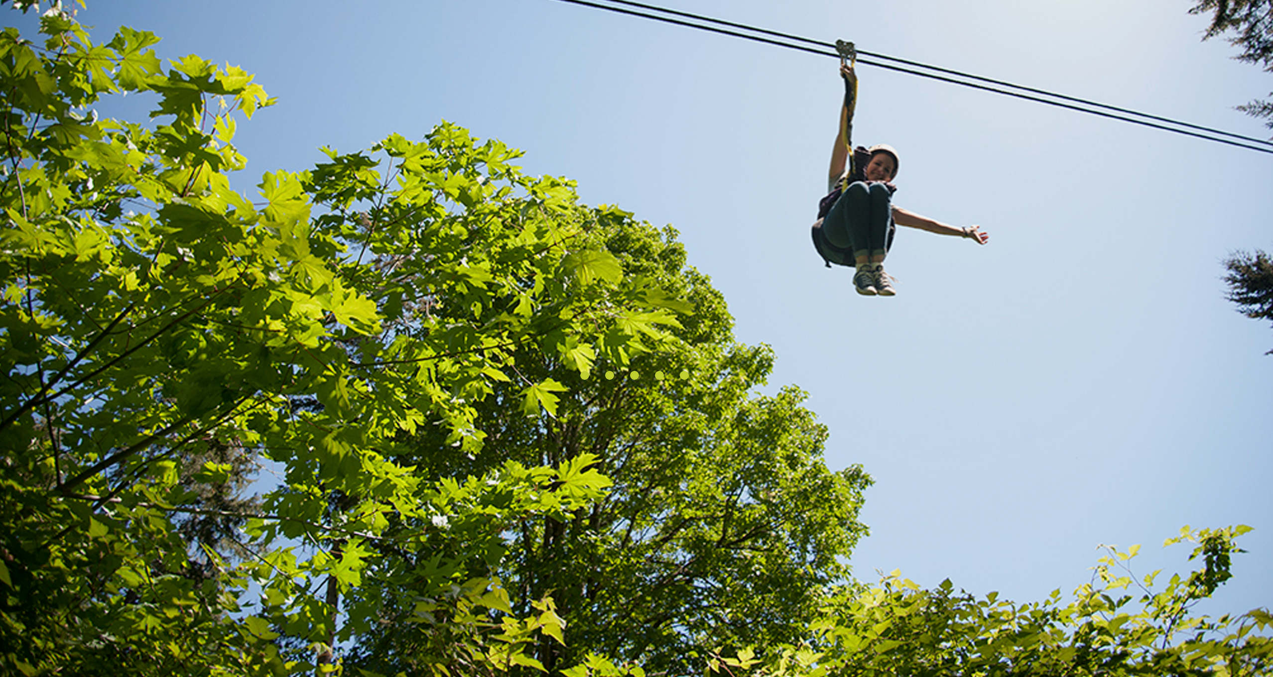 Person Zip Lining & CANOPY TOURS NW | ZIPLINE ADVENTURES